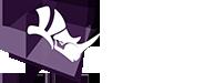 Rhino3DMedical Logo
